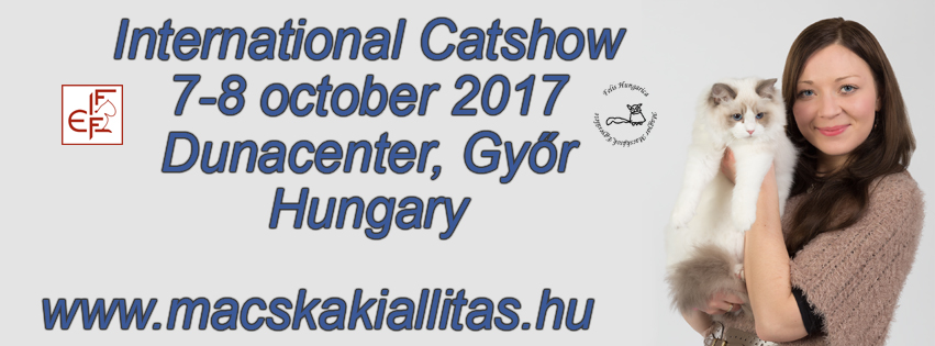 International FIFe catshow 7-8 october 2017 Győr, Hungary